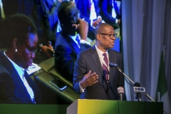 Okechukwu Enelemah, Minister of Industry, Trade and  Investment