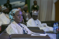 Aisha Abubakar, Minister of State for Industry, Trade and Investment